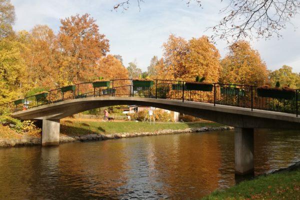 "Smakprov ur ""En bro av Poesi"""
